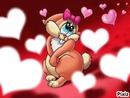 lapin coeur