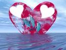 dauphin au fond de coeur