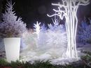 Cadre 1 photo décor Noël sapins